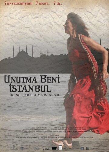 Не забывай меня, Стамбул (2011) полный фильм онлайн