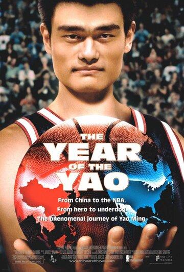 Год Йао (2004)