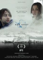 Красный узел (2014)
