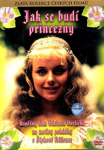 Как разбудить принцессу
