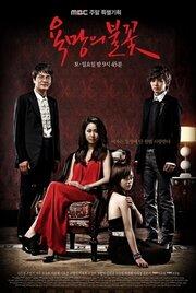 Пламя желаний (2010)