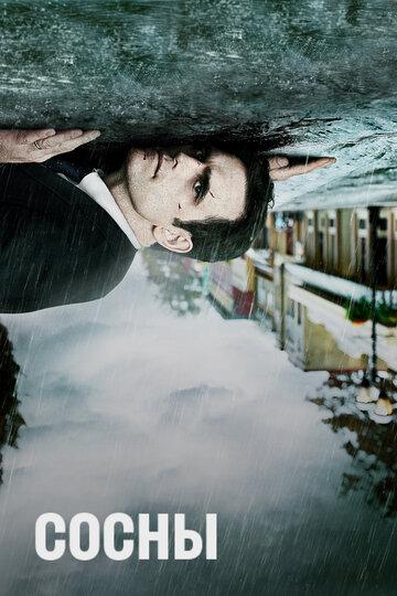 Сосны (2015) полный фильм онлайн