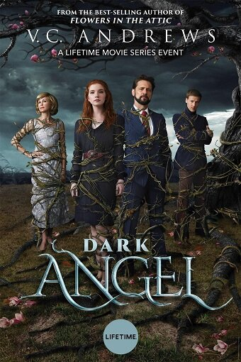Тёмный ангел / Dark Angel (2019)
