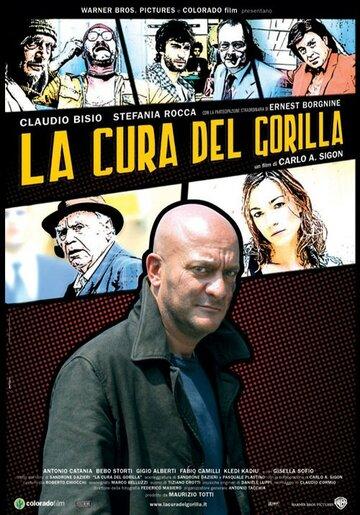 Излечить гориллу (2006)