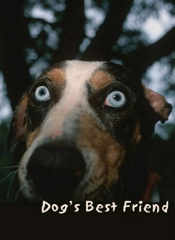 Лучший друг собак (1997)