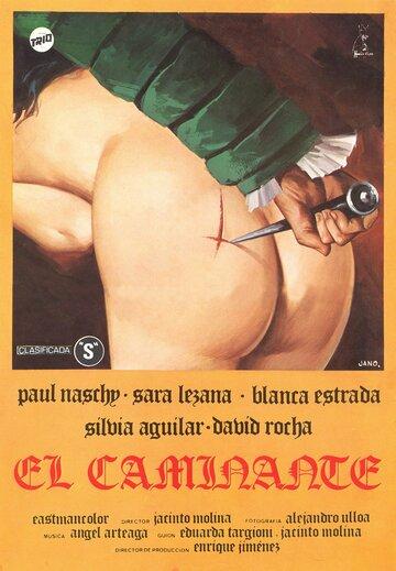 Странник (1979)
