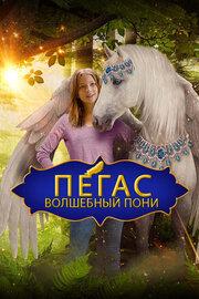 Пони с перебитым крылом