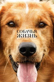 Смотреть онлайн Собачья жизнь