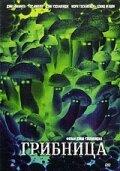 Грибница (2002)
