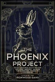 Проект Феникс