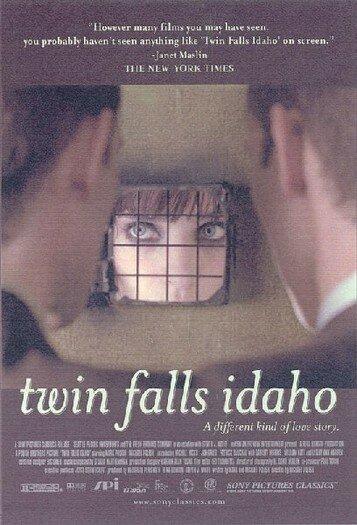 Близнецы из Айдахо (1999)