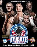 WWE Дань войск (2011)