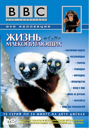 BBC: Жизнь млекопитающих (2002)