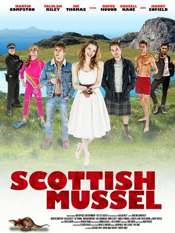 Шотландская мидия 2015