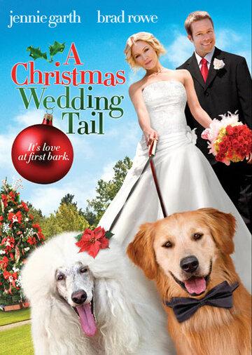 Рождественская свадебная сказка (2011)