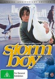 Смотреть онлайн Мальчик и океан