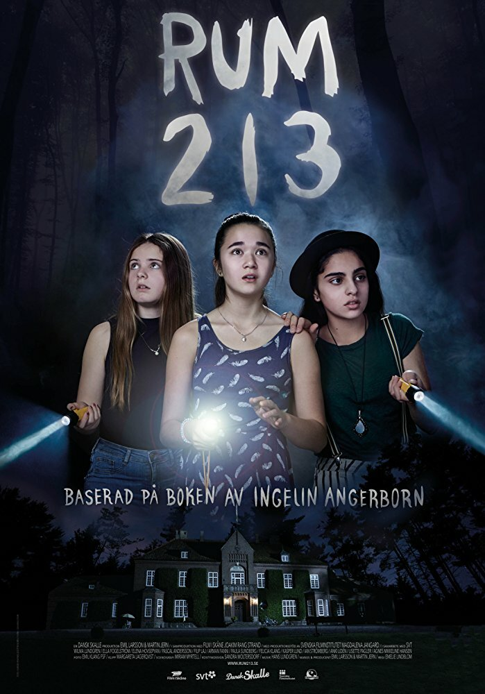 Комната 213 / Rum 213 (2017)