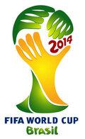 Чемпионат мира по футболу 2014 (2014)