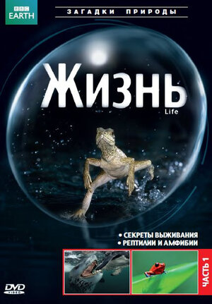 BBC: Жизнь (2009)