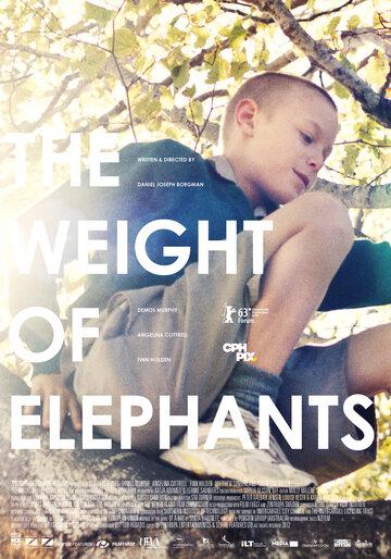 Вес слонов (2013) — отзывы и рейтинг фильма