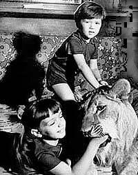 У меня есть лев (1975)