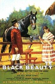 Смотреть онлайн Черная красавица