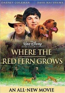 Цветок красного папоротника (2003)