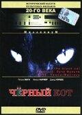 Черный кот (Black Cat)