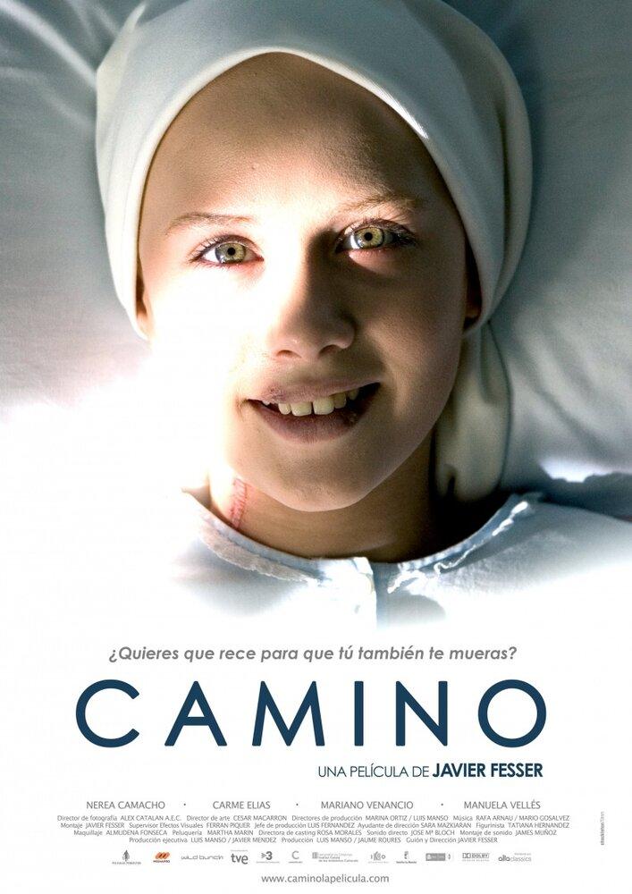 Путь – Камино / Camino