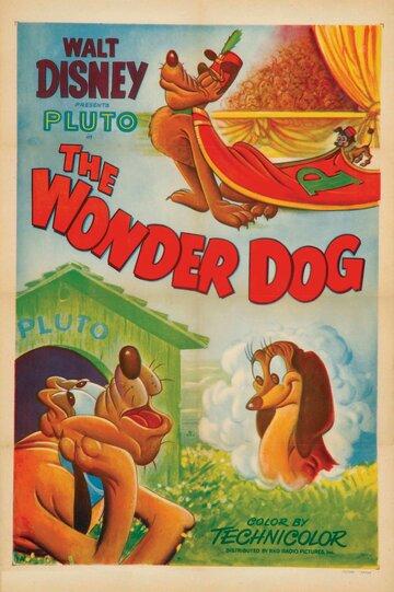 Чудесный пес (1950)