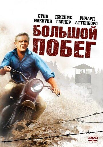 Кино Свобода! Бесконечное лето