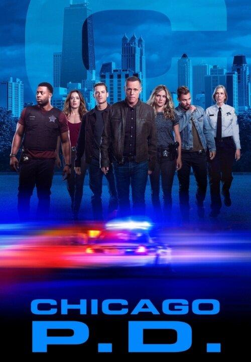 Полиция Чикаго 6 сезон 12 серия 2014