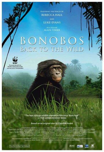 Шимпанзе: Возвращение в дикую природу