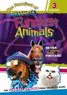 Самые забавные животные планеты