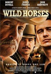 Смотреть Дикие лошади (2015) в HD качестве 720p