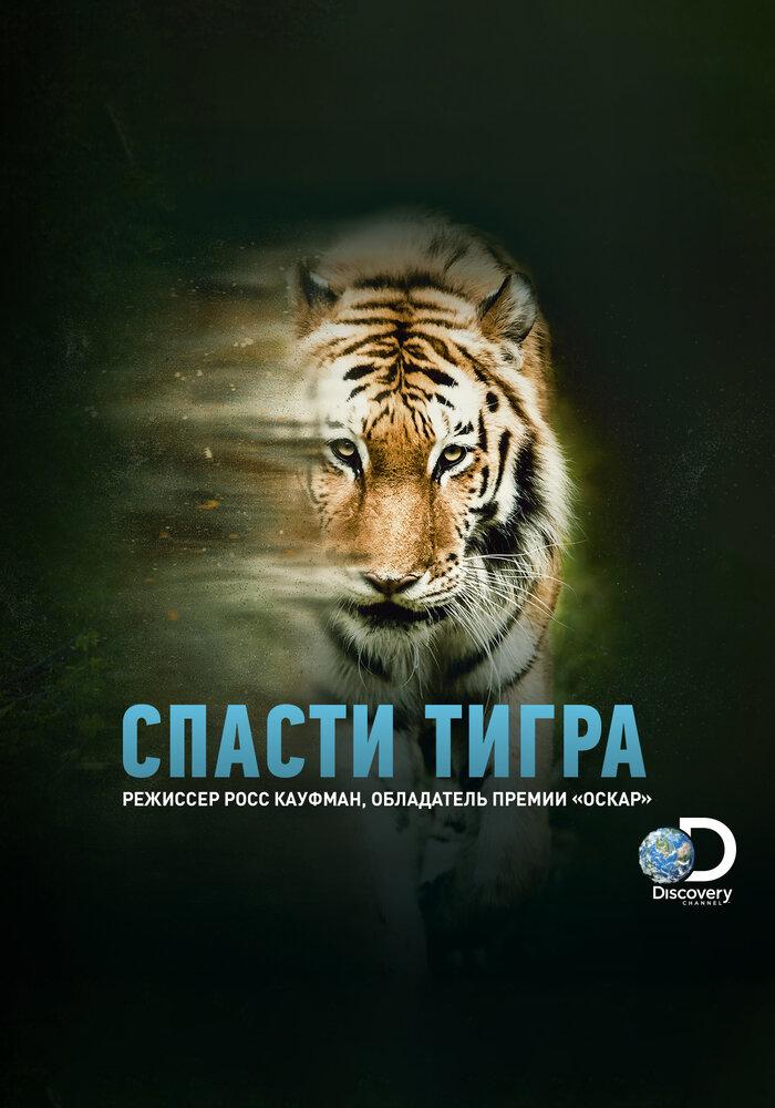 Спасти тигра (2019)