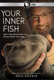 Смотреть онлайн Внутренняя рыба