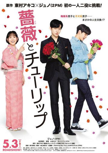Постер к фильму Роза и тюльпан (2019)