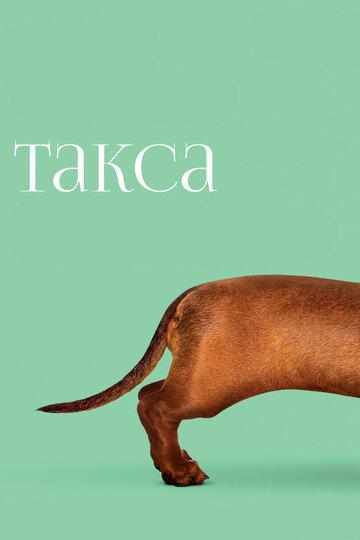 Такса / Wiener-Dog (2016) смотреть онлайн