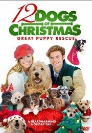 Смотреть онлайн 12 рождественских собак 2