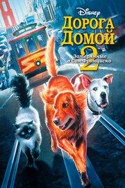 Дорога домой 2: Затерянные в Сан-Франциско (1996)