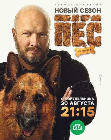 Пёс  (6 сезон)