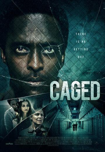 Постер к фильму В клетке (2021)