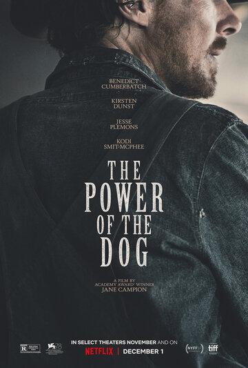 Власть пса / The Power of the Dog / 2021