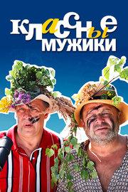 Классные мужики (2010)