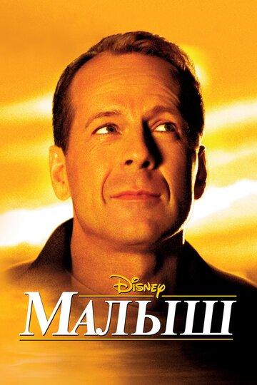 Постер к фильму Малыш (2000)