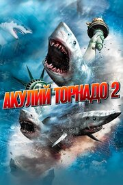 Смотреть онлайн Акулий торнадо 2