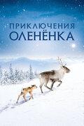 Приключения олененка (Aïlo: Une odyssée en Laponie)