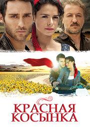 Смотреть Красная Косынка / Подарок Судьбы (2012) в HD качестве 720p