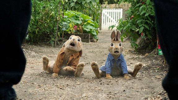 «Кролик Питер»